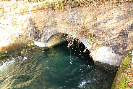 bridge3-008.jpg